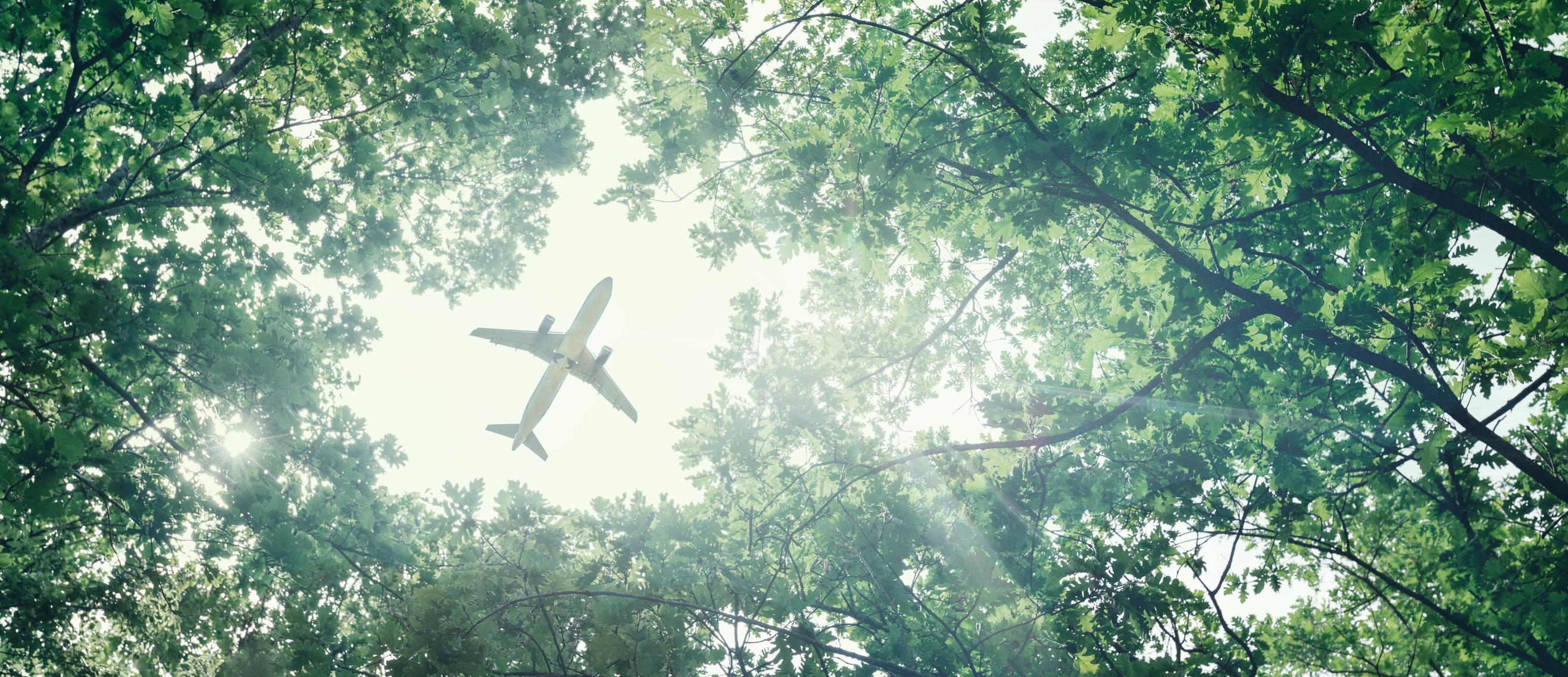 Ekologista lentämistä